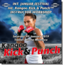 KANGOO KICK & PUNCH™ INSTRUCTOR WORKSHOP